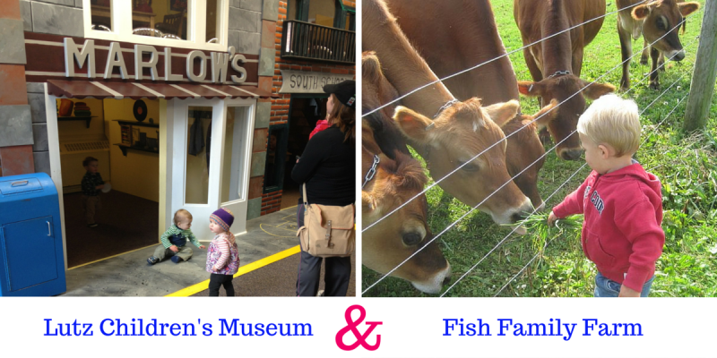 Connecticut open house day 2015 - Trout farming business family mountains ...
